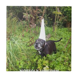 Broma del unicornio de Norfolk desenmascarada Azulejo