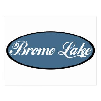 Brome Lake Souvenir Blue Postcard