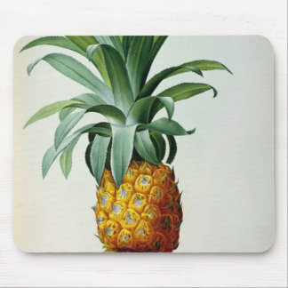 Bromelia Ananas, from 'Les Bromeliacees' Mouse Pad