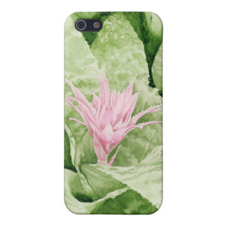 Bromeliad Case For iPhone 5
