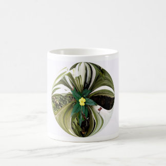 bromeliad circle mug