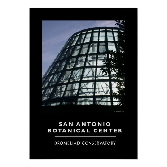Bromeliad Conservatory Poster