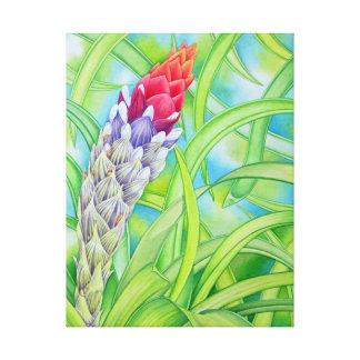 Bromeliad hawaiano impresiones en lienzo estiradas