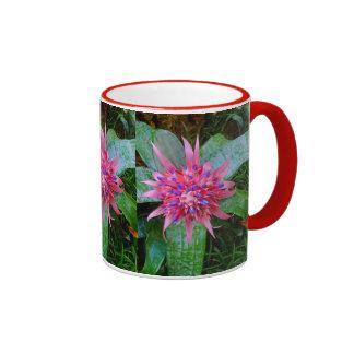 Bromeliad Coffee Mugs