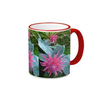 Bromeliad Mugs