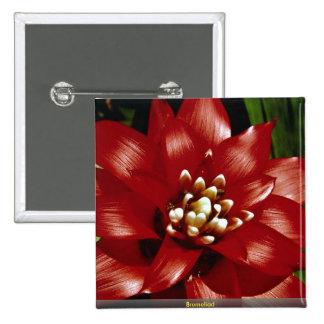 Bromeliad Pins