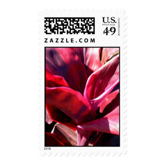 Bromeliad Postage Stamp