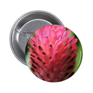 Bromeliad rosado 2 pins