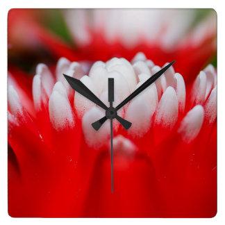 bromeliad square wall clock