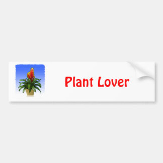 Bromeliad Vriesea Tosca Bumper Sticker