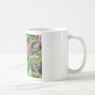 Bromeliade rojo 02 taza clásica