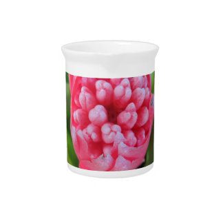 Bromeliade rojo 03 jarras