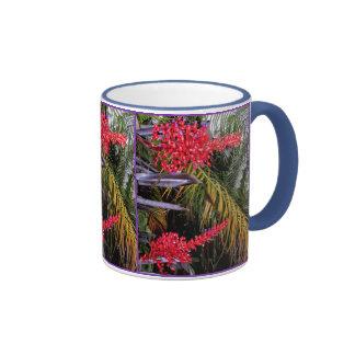 Bromeliads and palms mugs