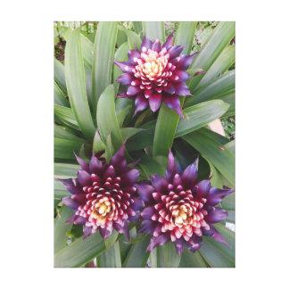 Bromeliads hawaiano impresion de lienzo