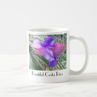 Bromeliads of Costa Rica Mugs