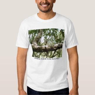 Bromeliads Outside Grutas de la Estrella T-Shirt