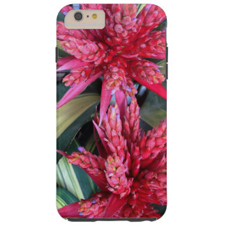 Bromeliads Tough iPhone 6 Plus Case
