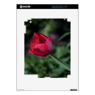 Bromista del tulipán calcomanía para el iPad 2