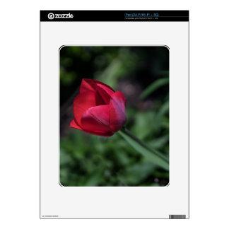 Bromista del tulipán iPad calcomanías