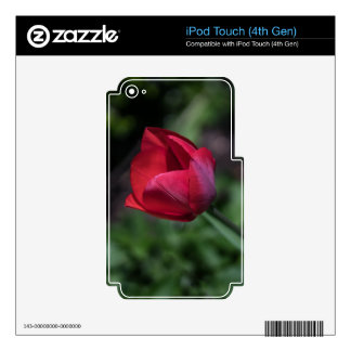 Bromista del tulipán skins para iPod touch 4G