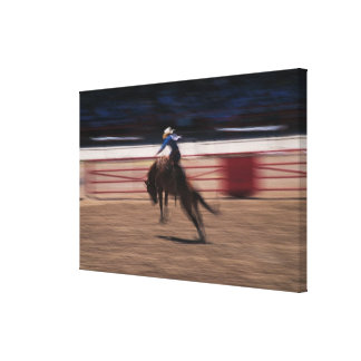 Bronco busting in rodeo in Cheyenne, Wyoming Canvas Print