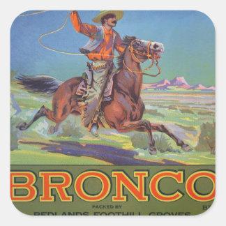'Bronco Oranges', c.1900 (colour litho) Sticker