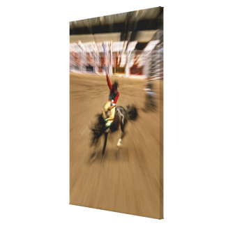 Bronco rider (zoom) canvas print