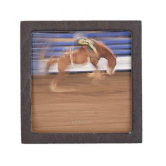 Bronco riding keepsake box