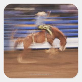 Bronco riding stickers