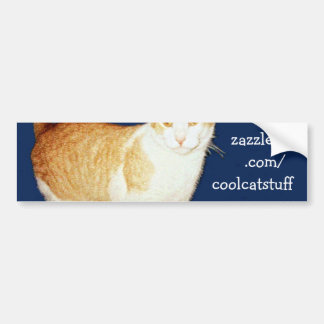 Bronco The Cat Bumper Sticker