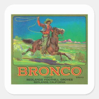 Bronco Vintage Fruit Label Sticker
