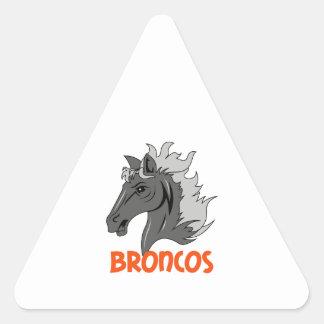BRONCOS TRIANGLE STICKER