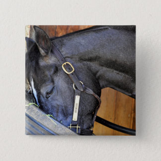 Bronson Pinback Button