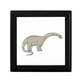 Brontosaurus Dinosaur Looking Down Mono Line Jewelry Box