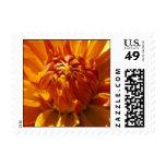 Bronze Beauty Postage Stamp