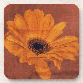 Bronze Daisy Floral Coaster Set