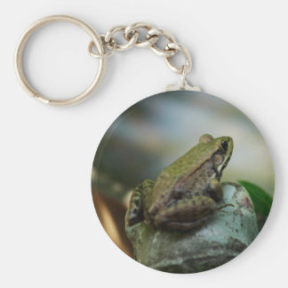 Bronze Frog on Froggy Keychain
