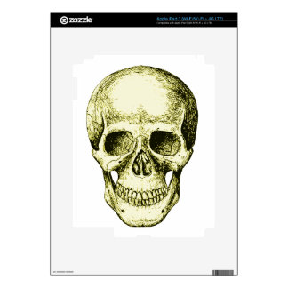 Bronze Human Skull face Decal For iPad 3
