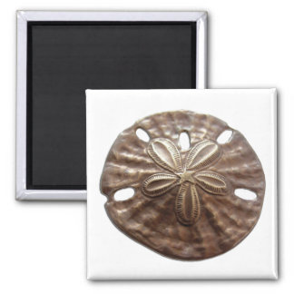 Bronze Sand Dollar 2 Inch Square Magnet