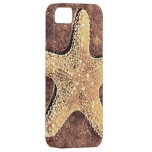 Bronze Starfish iPhone 5 Case