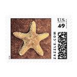 Bronze Starfish Postage