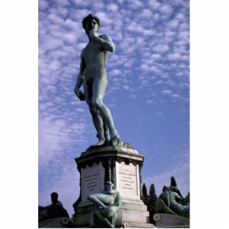 Bronze statue, David by Michelangelo, Florence, It Cutout