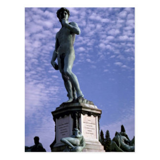 Bronze statue, David by Michelangelo, Florence, It Postcard