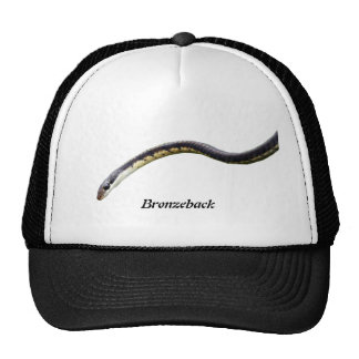 Bronzeback Trucker Hat
