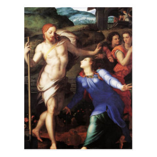 Bronzino - Touch me Not II Post Card