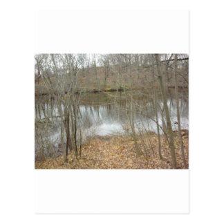 Brook in Autumn Postcard