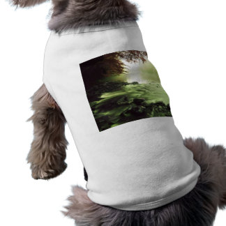 Brook River Shirt