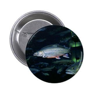 Brook trout 2 inch round button