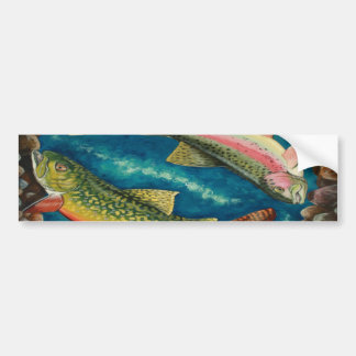 Brook Trout and Rainbow Trout Bumper Sticker