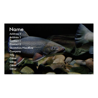 Brook trout business cards